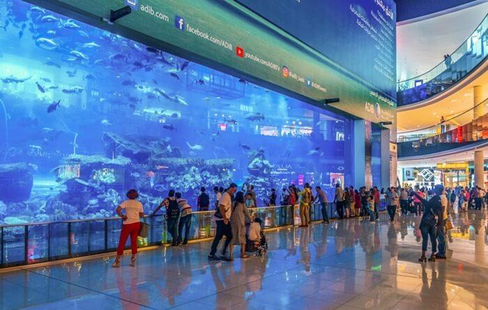 Tempat wisata di subai Akuarium ini menampung lebih dari 33.000 ribu hewan air. Lebih dari 300 hiu hidup di akuarium ini, dan memiliki koleksi hiu macan pasir terbesar di dunia.