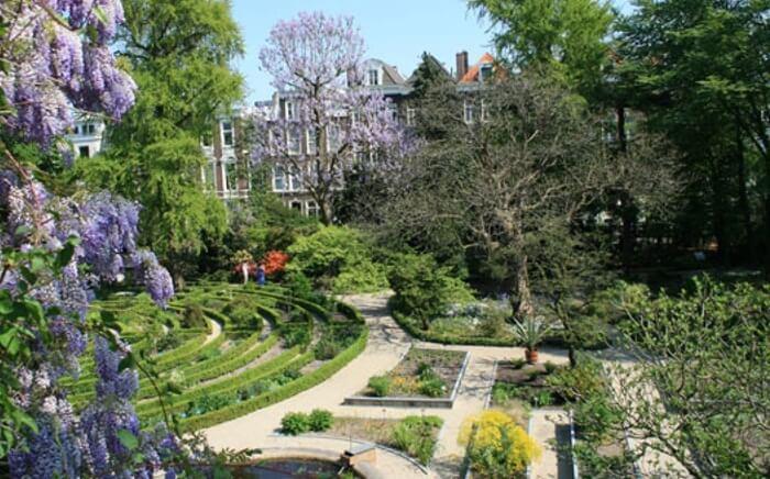 Awalnya tempat wisata di Amsterdam ini adalah kebun herbal dengan tanaman medis untuk dokter dan apoteker Amsterdam.