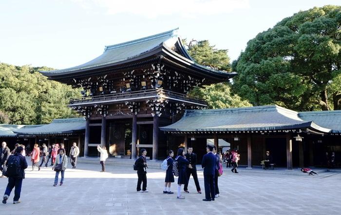 tempat wisata di Tokyo ini dikelilingi oleh ratusan ribu jenis pohon yang berasal dari seluruh penjuru Jepang dan dunia.
