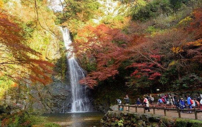 tempat wisata di osaka Mino Park memiliki iklim yang sejuk sepanjang tahun , dengan suasana yang sangat damai dan tenang.