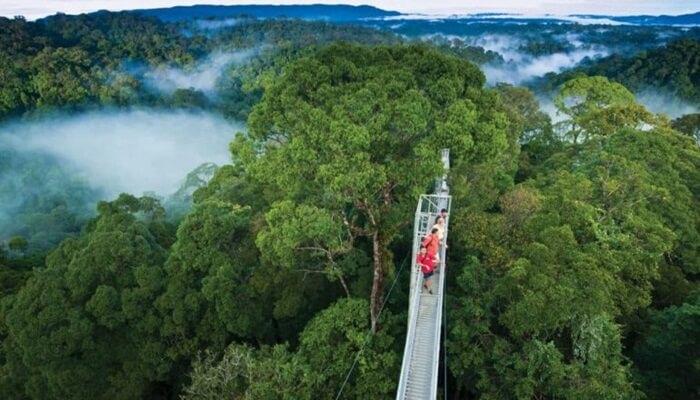 Taman Nasional Tempat Wisata di Brunei Darussalam  ini dianggap sebagai hutan hujan tropis terbaik yang dilestarikan di Pulau Kalimantan.