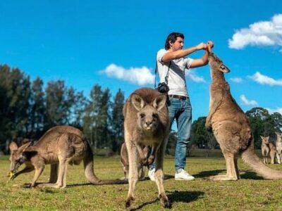 11 Tempat Wisata di Australia, Lokasi Terbaik Untuk Liburan
