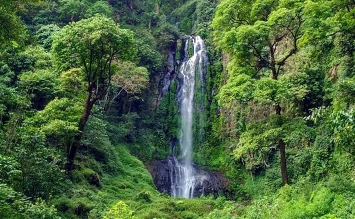 Dengan ketinggian air terjun yang mencapai 70 meter, pengunjung tempat wisata Ungaran ini bisa mendengarkan gemuruh air yang cukup deras
