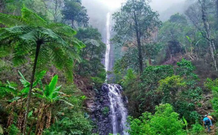 Berada pada ketinggian 1.300 meter dari permukaan laut, tempat wisata kendal curug Semawur membius para wisatawan yang mengunjunginya.