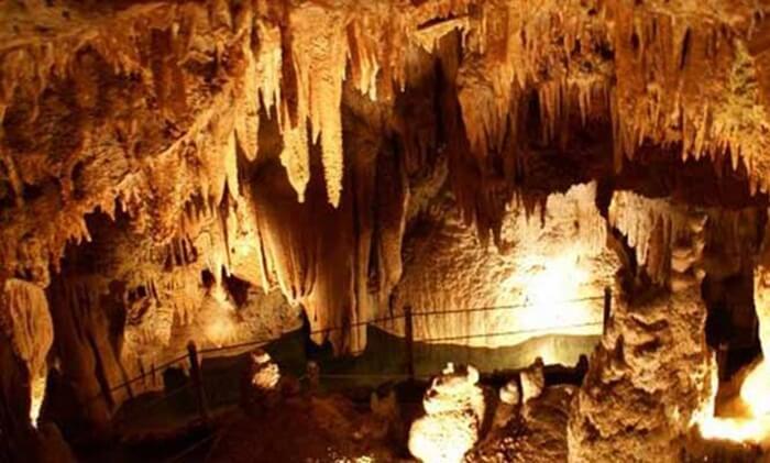 Di tempat wisata Tegal ini ditemukan pula stagnit dan stalagtit. Kalau pengunjung melangkah jauh ke dalam, pada bagian ujung gua bakal dijumpai sungai yang mengalir, menembus perut bumi.