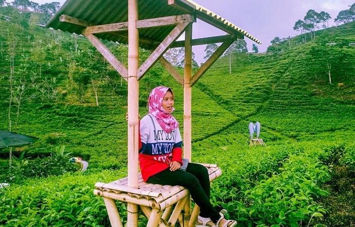 Kebun teh Kemuning, salah satu tempat wisata btawangmangu yang diidolakan anak muda