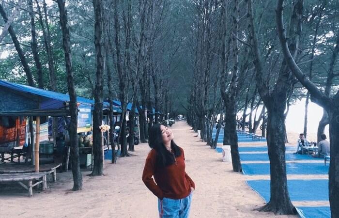 Sesuai dengan namanya, tempat wisata Tuban Pantai Cemara ini memiliki keunikan yaitu dengan keberadaan pohon-pohon cemara yang hijau nan rindang.
