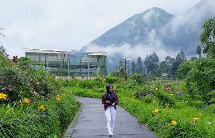 Sebagai daerah wisata favorit, terdapat beragam alternatif tempat wisata Probolinggo. Mulai dari pantai hingga gunung, semua tampak sama menawannya.