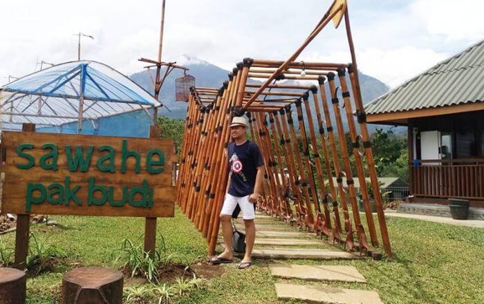 Suasana pedesaan yang asri akan menyambut pengunjung begitu memasuki kawasan tempat wisata Pasuruan, Kebun Pak Budi