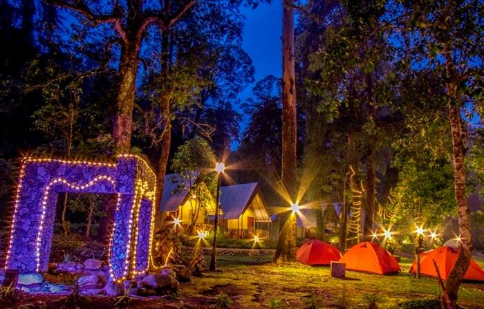 Tempat wisata Magetan Mojosemi Forest Park menawarkan beragam wahana seru yang menguji adrenalin untuk pengunjung.
