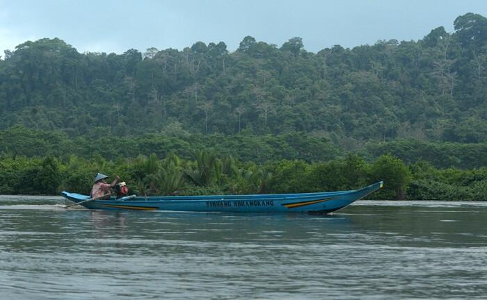 Kawasan tempat wisata Cilacap Segara Anakan, merupakan tempat bertemunya 3  sungai besar.