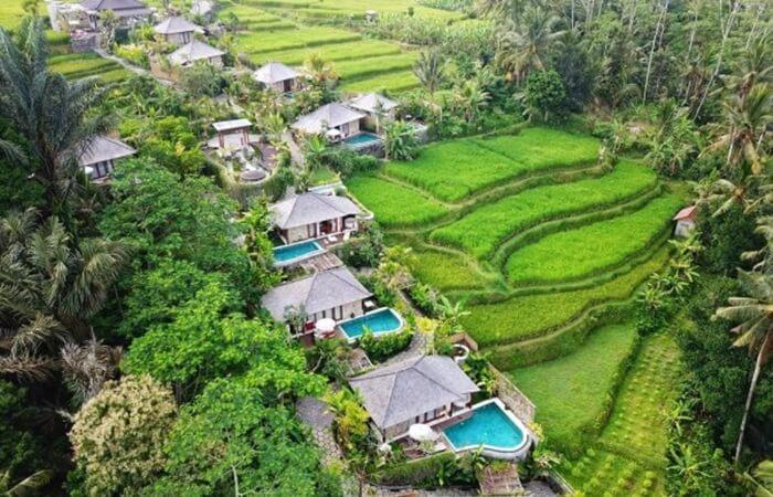 Tempat wisata ubud yang menjadi lokasi syuting film Eat, Pray, Love, menyajikan suasana alami pedesaan yang menjadi daya tarik tersendiri bagi wisatawan