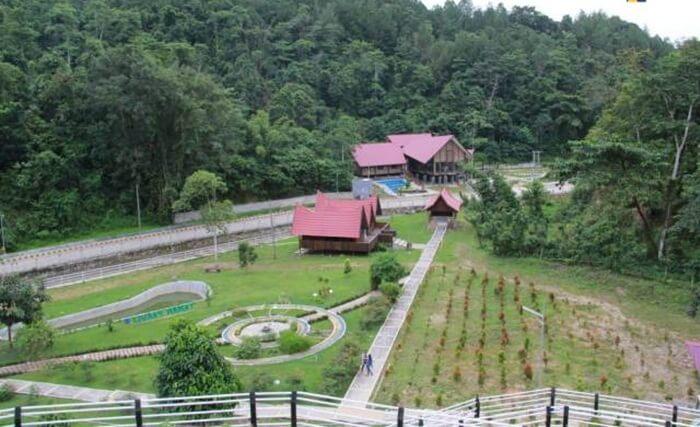 Kebun raya tempat wisata Kendari itu ditata berdasarkan pola-pola klasifikasi taksonomi, tematik atau kombinasi dari pola-pola tersebut