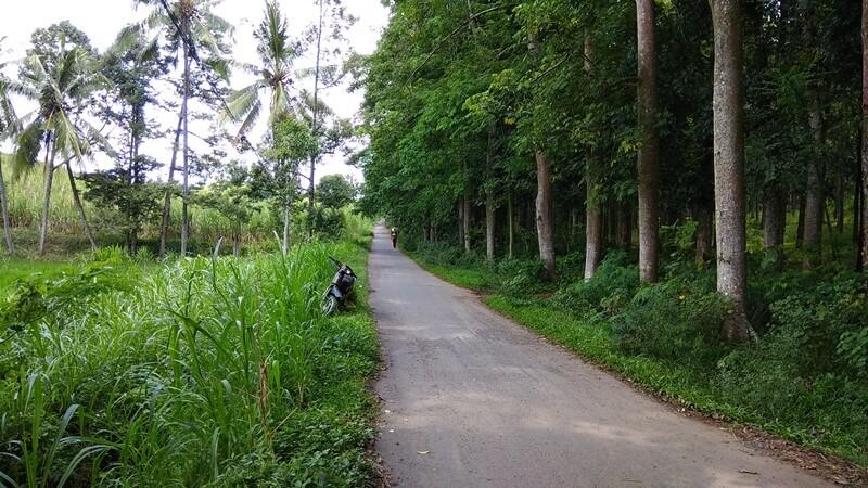 Jalan Menuju Situs Duplang