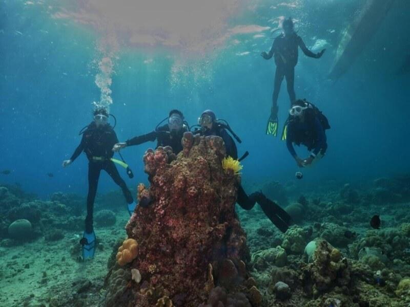 Menyelam Di Taman Laut Olele