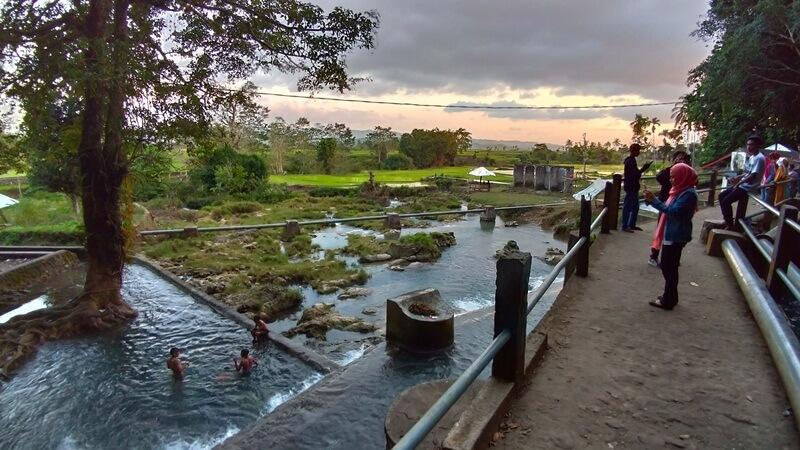 Panorama Sumber Mata Air Dan Sawah