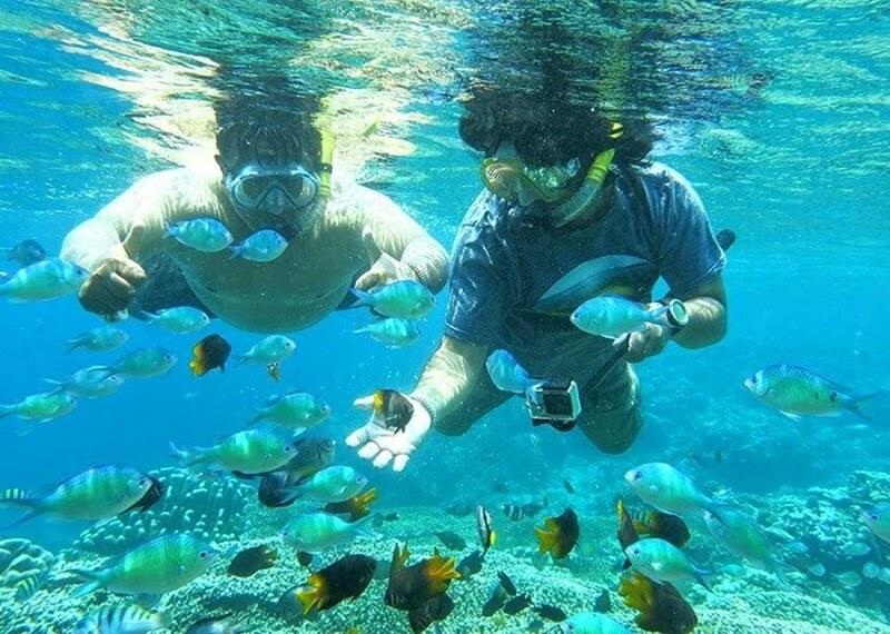 Snorkeling Seru