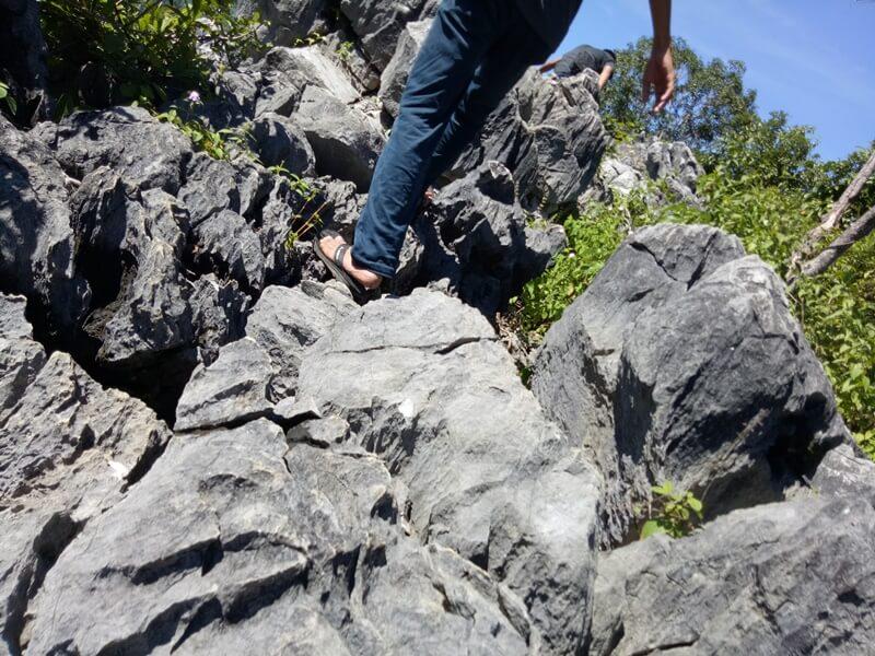 Trekking Menuju Puncak Bukit
