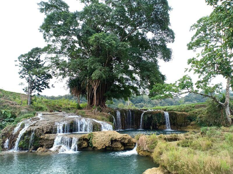 View Sawah Dan Kolam Air
