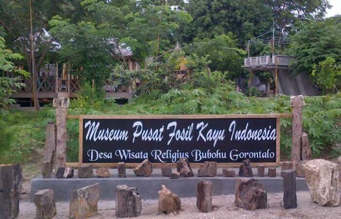 koleksi museum fosil kayu di desa adat Bubohu