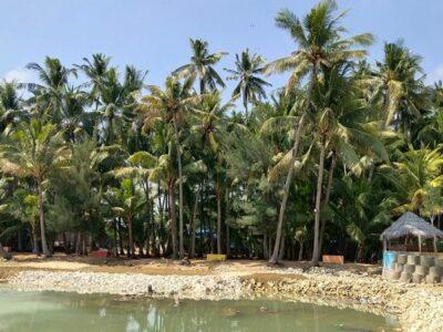 Pantai Kelapa Tuban, Update Terbaru Tiket Masuk, Dan Penginapan