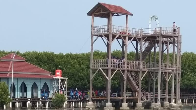 Menara Di Mangrove Brebes