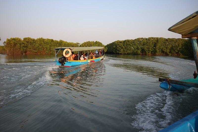 Rute Menuju Mangrove Brebes