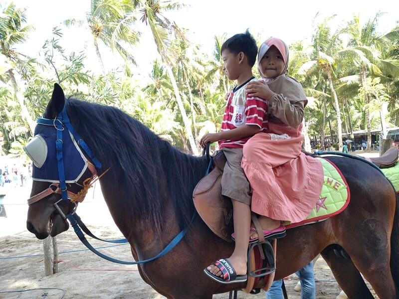 Serunya Berkuda Mengelilingi Pantai