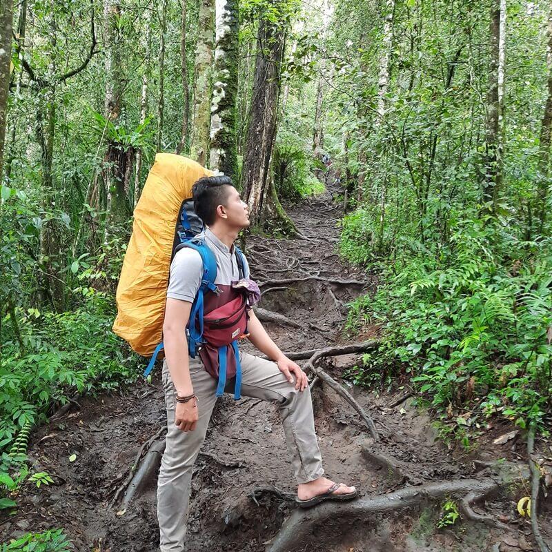 kondisi jalur pendakian menuju danau gunung tujuh