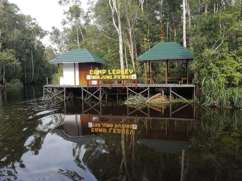 Camp Leakey Tanjung Puting