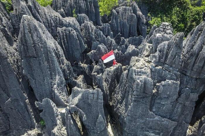 hutan batu di kompleks karst Rammang-rammang