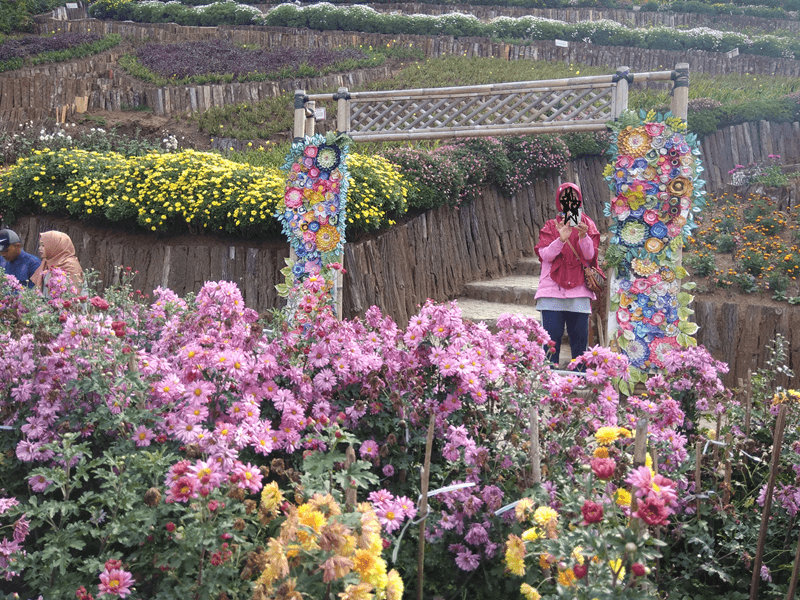 Dihiasi Bunga Cantik Yang Berwarna Warni