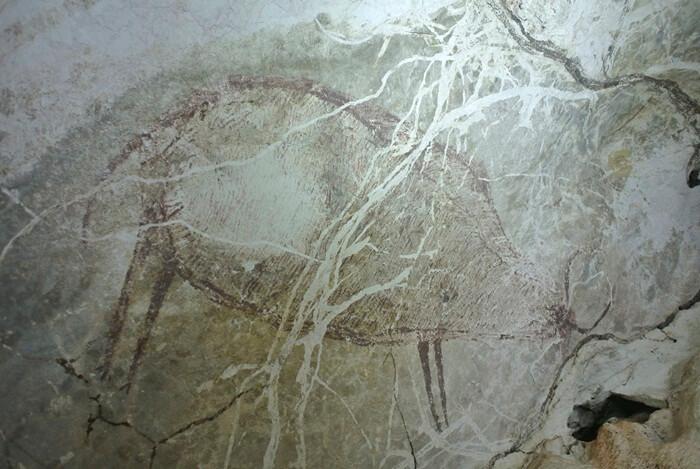 Selain lukisan telapak tanga, dinding gua telapak tangan juga berisi lukisan rusa, lebah dan tokek