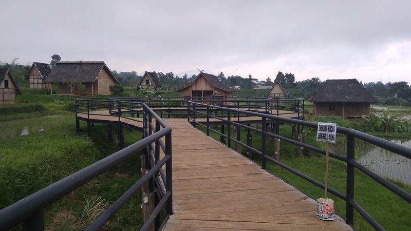 Jembatan Ikonik Di Kampung Padi Pandanwangi