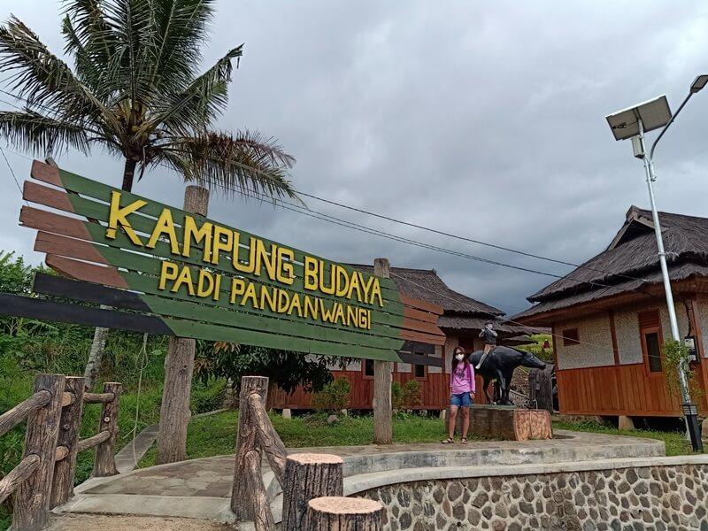 Kampung Padi Pandanwangi