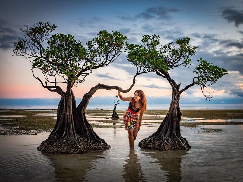Kehadiran Mangrove Kerdil Menjadi Daya Tarik Tersendiri