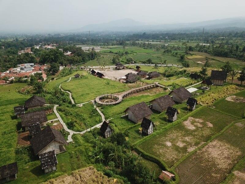 Landscape Kampung Padi Pandanwangi
