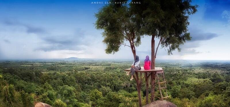 Menikmati Alam Di Atas Rumah Pohon