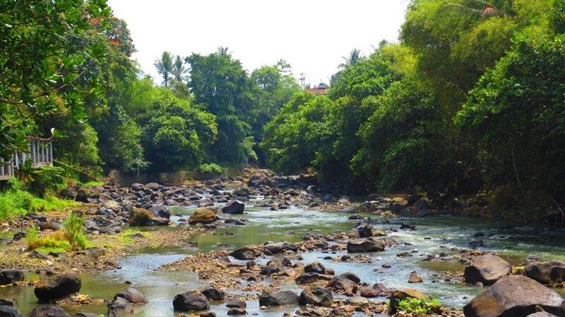 View Sungai Cimandiri