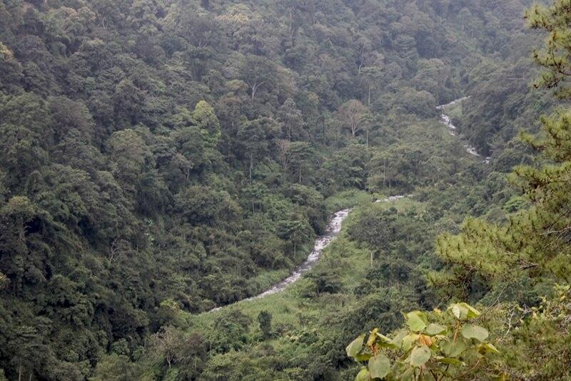 Landscape Tahura Raden Soerjo