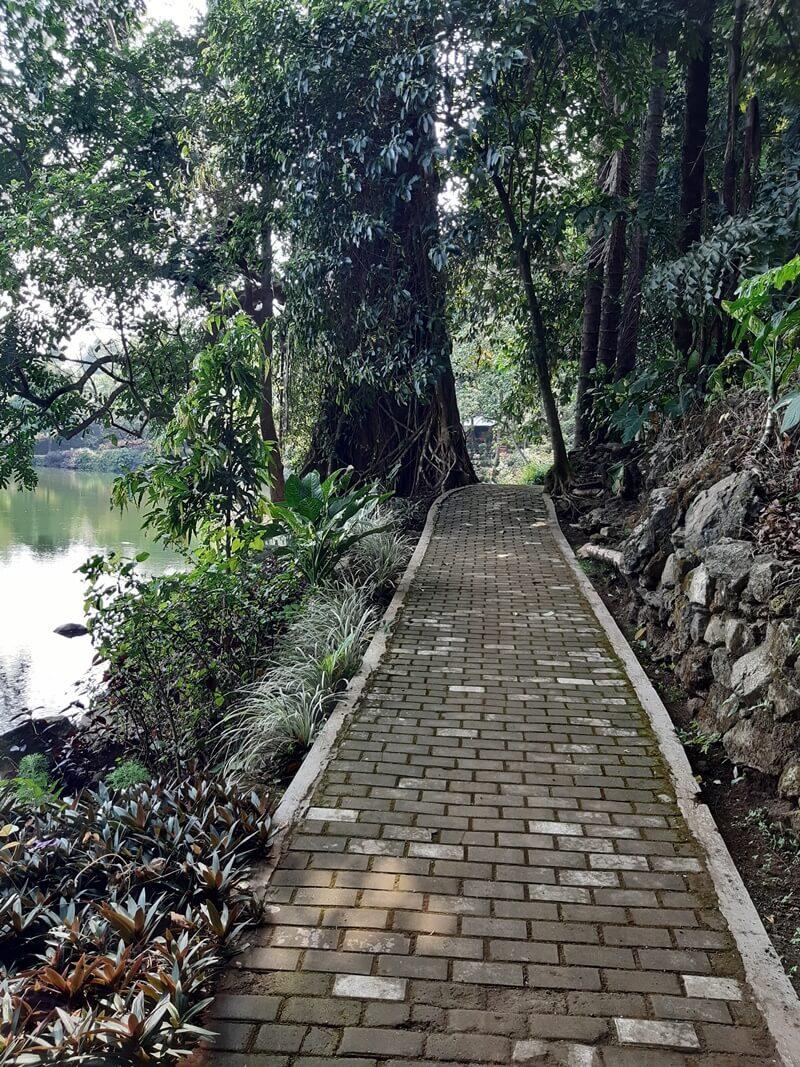 Trekking Nyaman Di Situ Cipanten