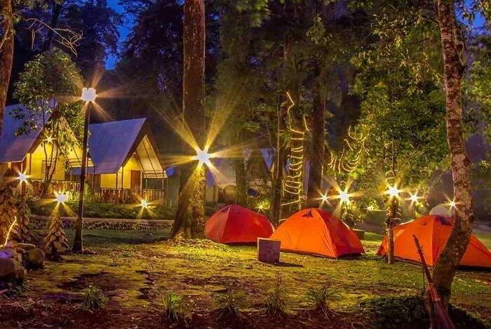 Bermalam di Mojosemi Forest Park dan istirahat di Lawu Forest Camp begitu nyaman