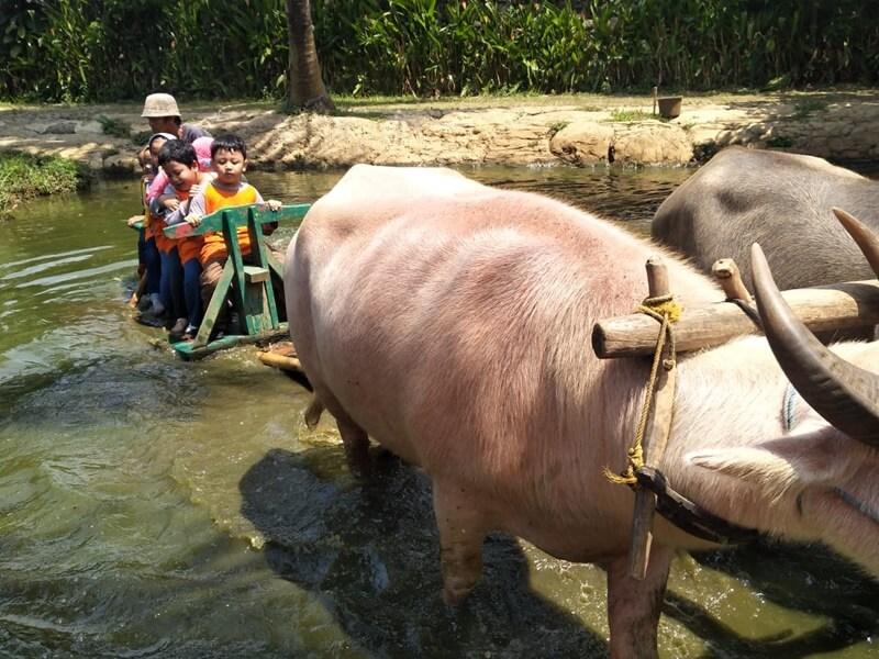 Wisata Edukasi Di Pelita Desa