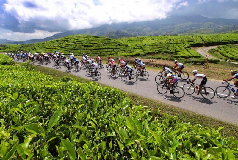 Bersepeda Di Perkebunan Alahan Panjang