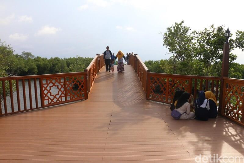 Jembatan Di Hutan Mangrove Langsa