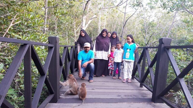 Monyet Seolah Menyapa Pengunjung Di Hutan Mangrove Langsa