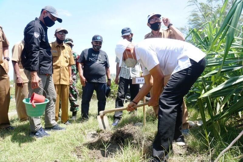 Penanaman Pohon Oleh Pemerintah Setempat