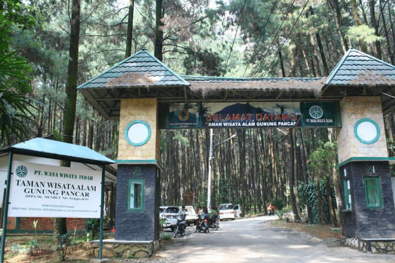Pintu Masuk Hutan Pinus Sentul
