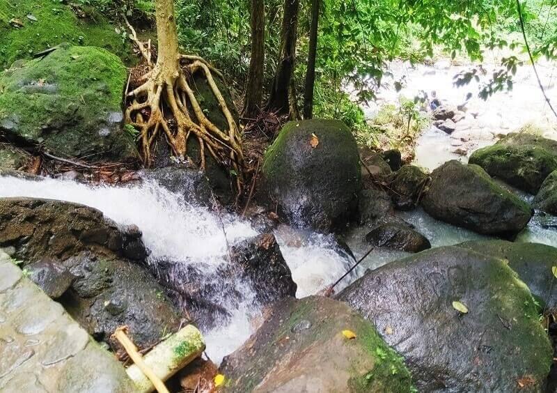 Aliran Sungai Air Terjun Batu Putu
