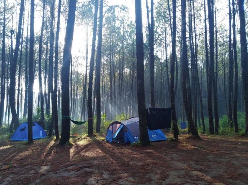 Camping Ground Curug Layung